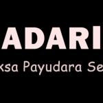 Periksa Payudara Sendiri (SADARI), 5 Langkah Sederhana untuk Antisipasi dan Penanganan Kanker Payudara