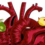 Berapa Nilai Kadar Lipid Normal Manusia?