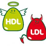 HDL dan LDL, Apa Bedanya?