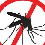 Rapid Test Malaria, Si Pendeteksi Penyakit Malaria