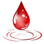 Cara Menyimpan Sampel Darah Di Inkubator Darah