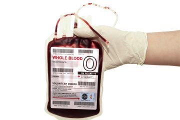 Blood bag on white background