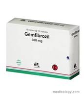 jual Gemfibrozil Tablet 300 mg per Box isi 100 Tablet