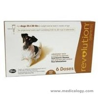jual Revolution Dog / Anjing 10,1 - 20 Lbs