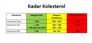 Kadar-Kolesterol-Normal-Menurut-WHO